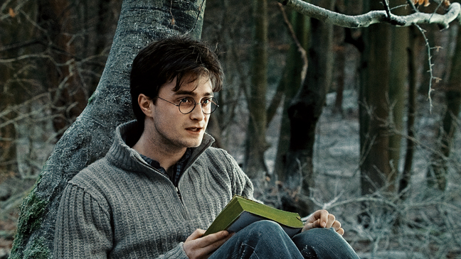 1 REP Harry Potter