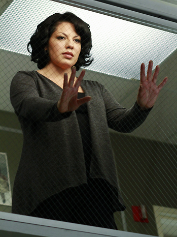 Grey's Anatomy Musical 2011