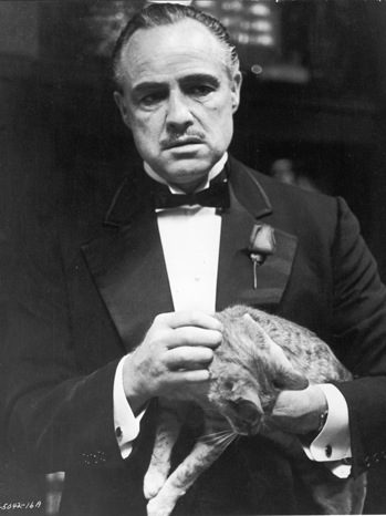 The Godfather - Movie Still: Marlon Brando - P - 1972