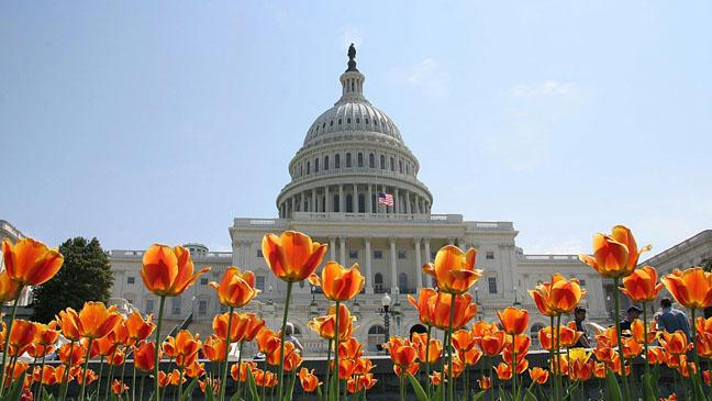 Capitol Building Washington D.C. Exterior - H 2011