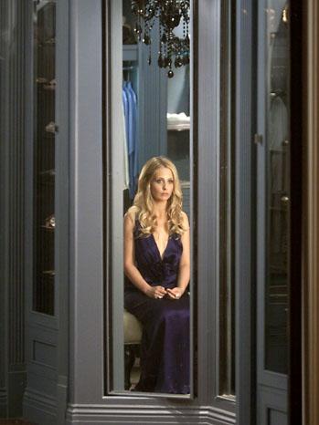 Sarah Michelle Gellar Ringer CW WIndow - P 2011