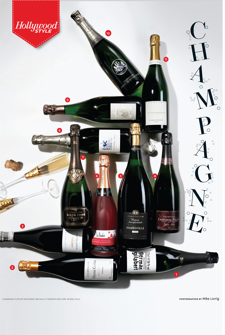 47 STY Champagne Infographic iPad