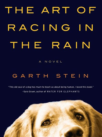 The Art of Racing in the Rain Cover - P 2011