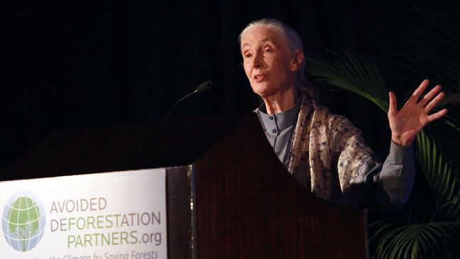 Jane Goodall United Nations Speech - H 2011