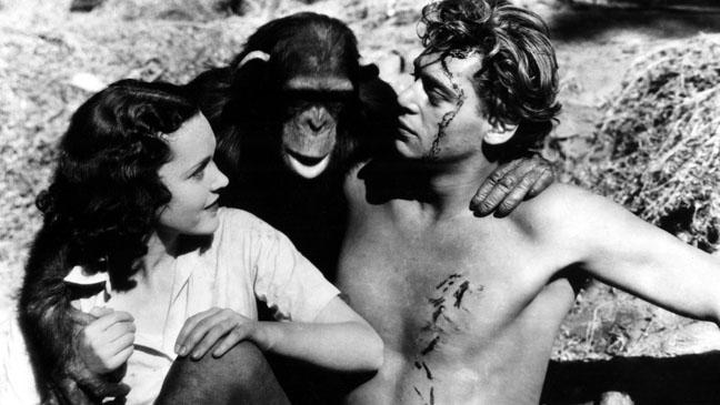 Cheeta Tarzan the Ape Man 1933- H 2011