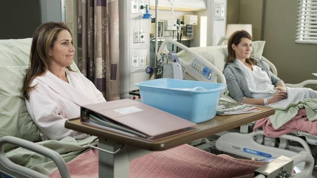 Grey's Anatomy Gilpin Vardalos - H 2012