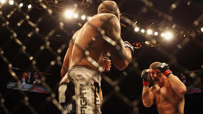 UFC Fight Cage - H 2012