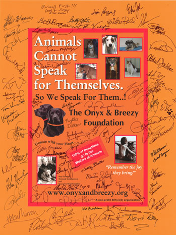 Onyx and Breezy Foundation Poster - P 2012