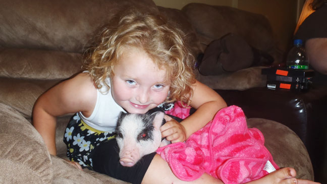 Honey Boo Boo with Glitzy Pig - H 2012