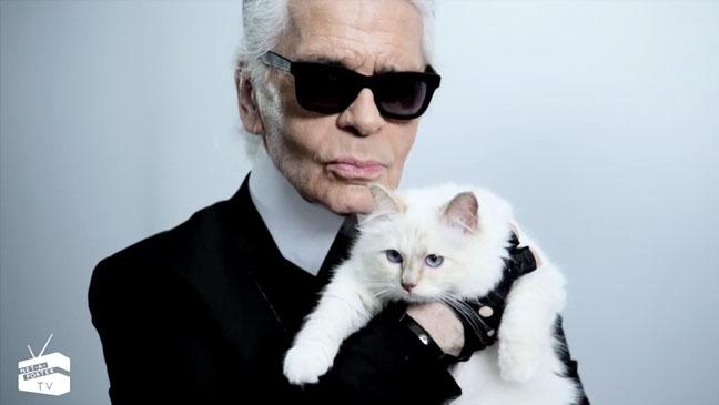 Karl Lagerfeld Choupette Net-A-Porter - H 2012
