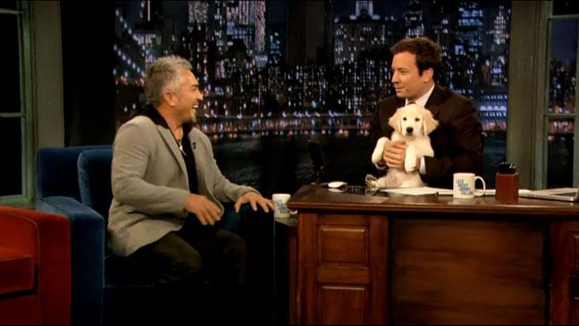 Late Night with Jimmy Fallon Cesar Millan - H 2012