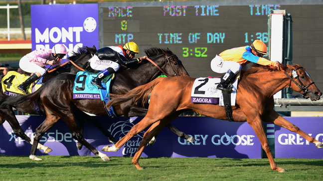 Breeder's Cup Horse Race - H 2012