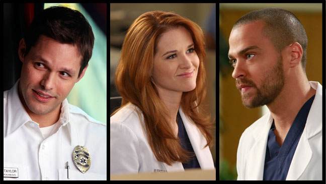 Grey's Anatomy Bruening Drew Williams Split - H 2013