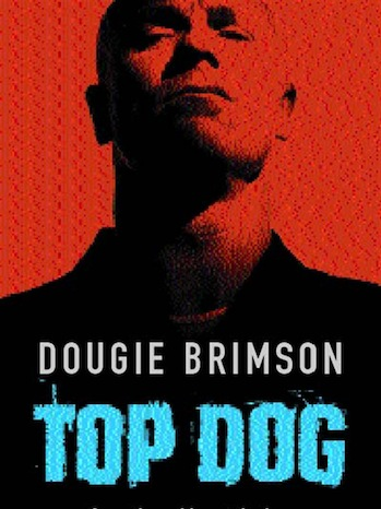 Top Dog Book Cover p