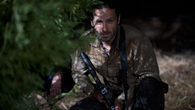 The Walking Dead 316 Rick Grimes - H 2013