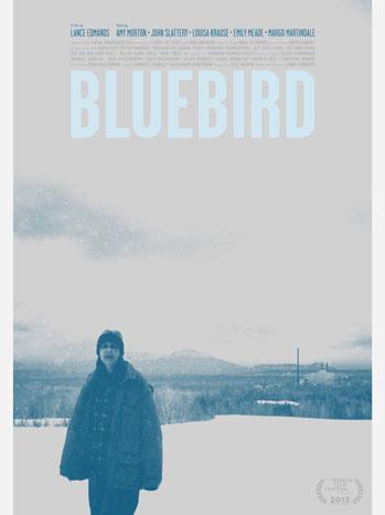 BlueBird One Sheet - P 2013