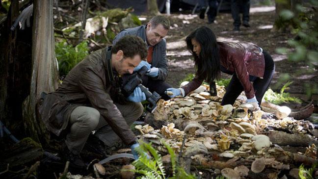 Hannibal Crime Scene - H 2013