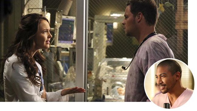 Grey's Anatomy Luddington Chambers with Davis Inset- H 2013