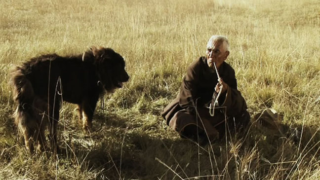 Old Dog Film Still - H 2013