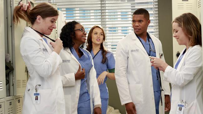 Grey's Anatomy Interns Episodic - H 2013