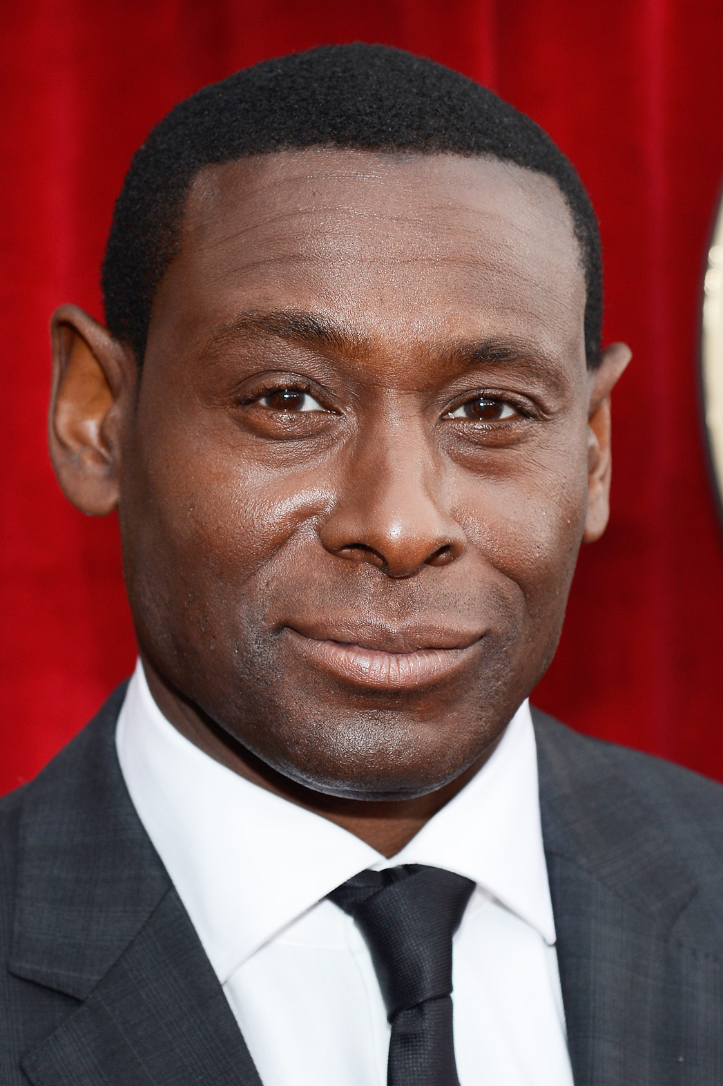 David Harewood SAG Awards Arrivals - P 2013
