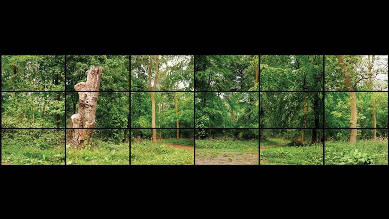 LACMA Hockney Landscape Video - H 2013