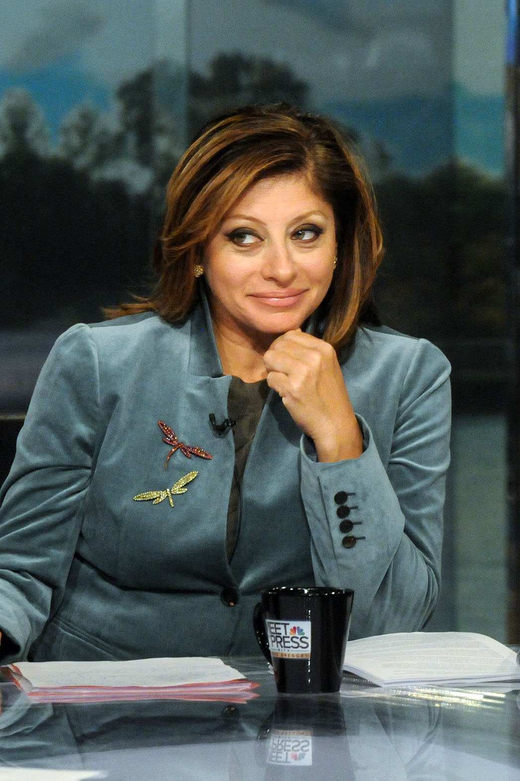 Maria Bartiromo Meet The Press - P 2013