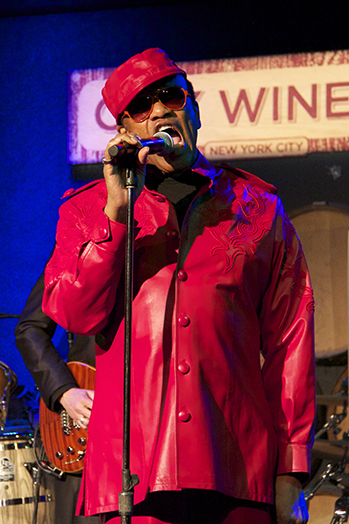 Bobby Womack live 2013 P