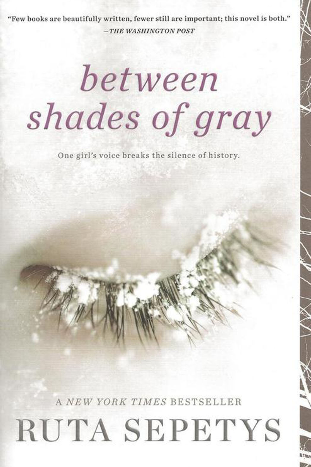Between Shades of Gray Cover - P 2014