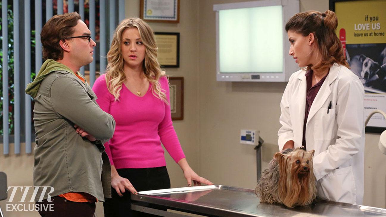 Big Bang Theory Veterinarian Office - H 2014