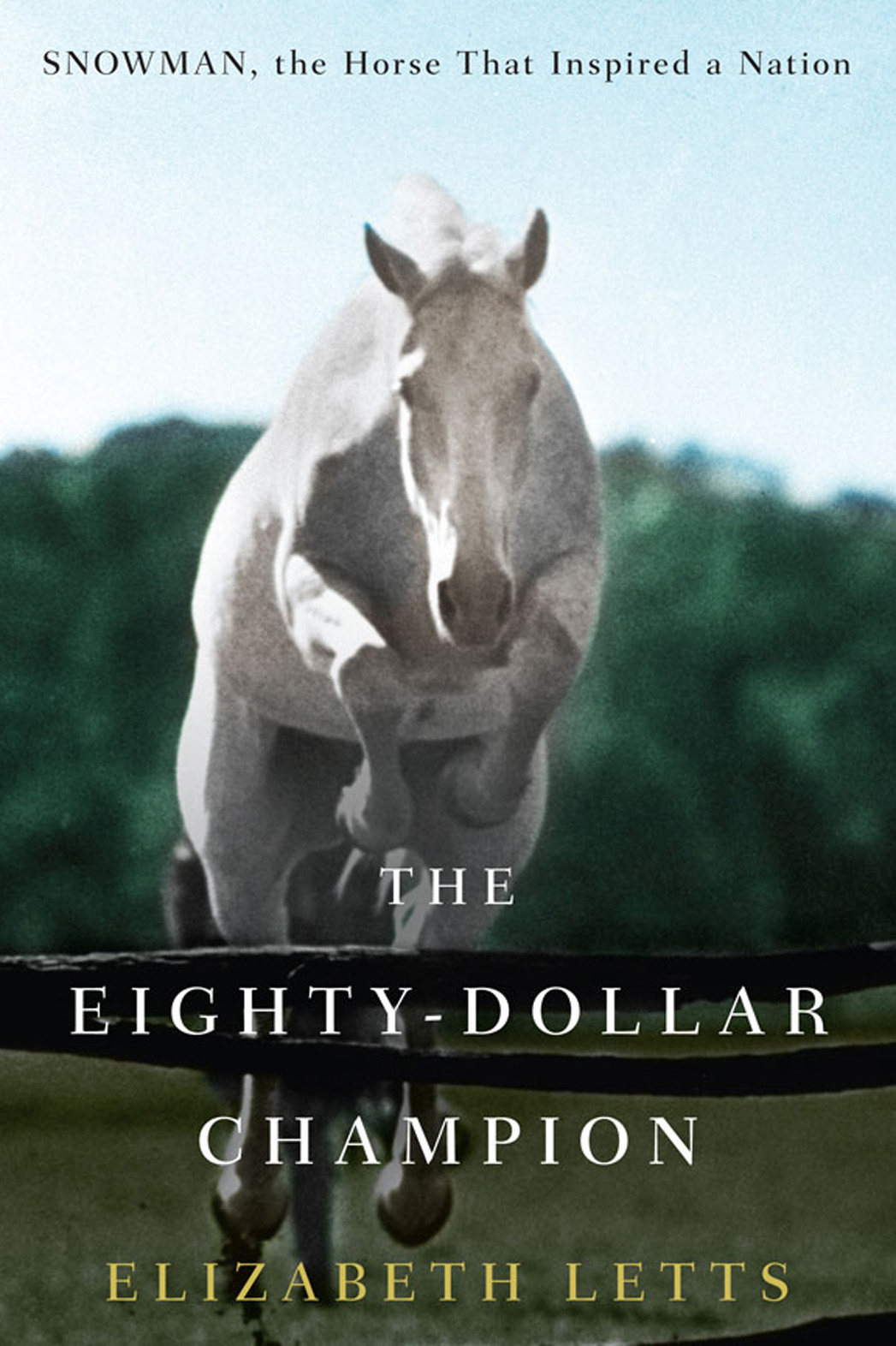 The Eighty-Dollar Champion Cover - P 2014