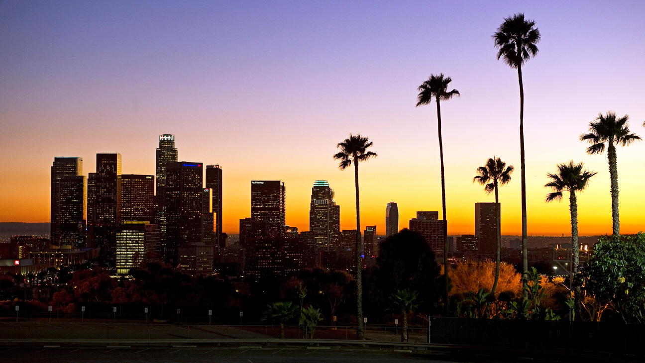 Downtown Los Angeles Skyline Silhouette - H 2014