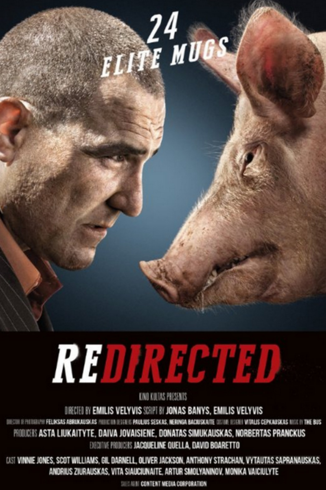 Redirected - P - 2014