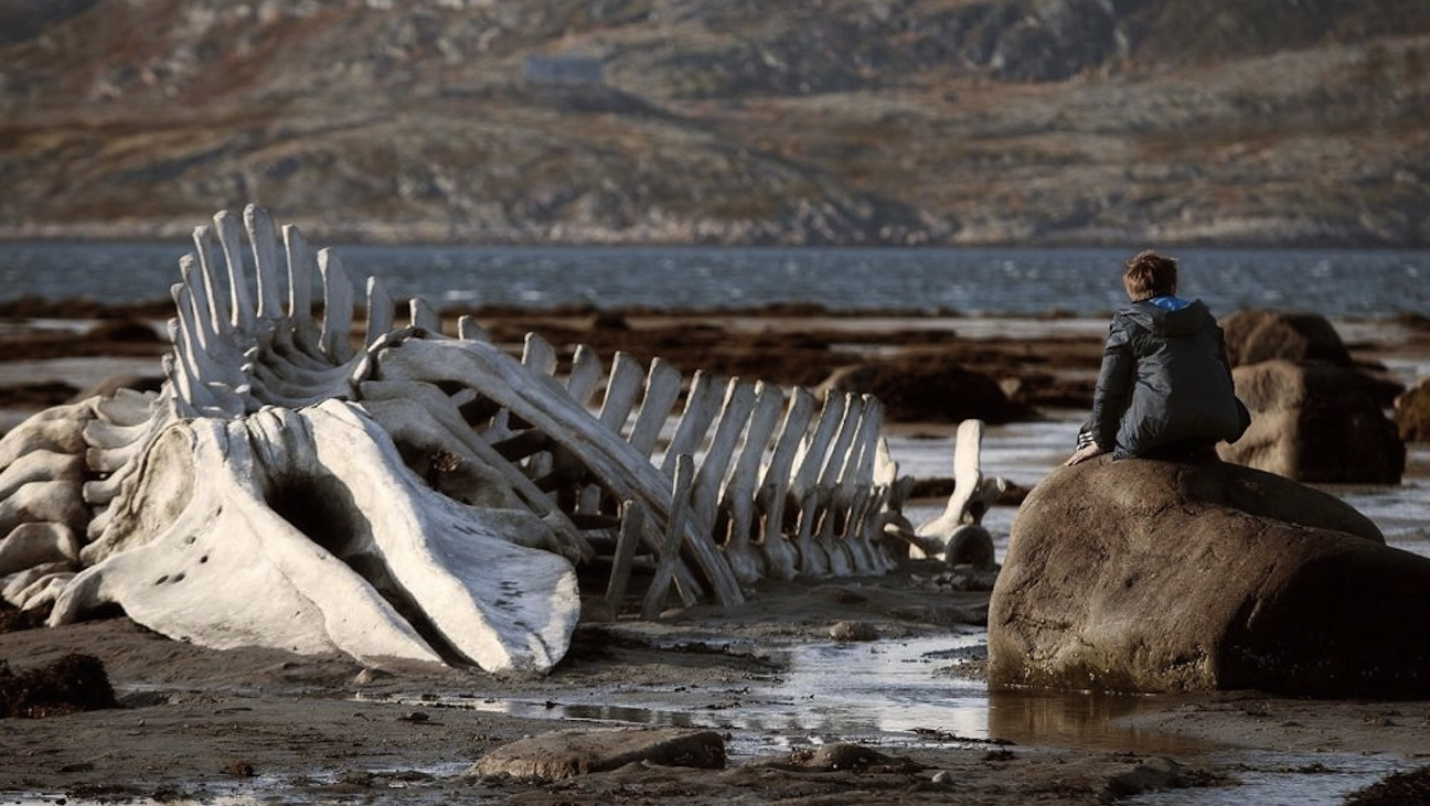 'Leviathan,' Andrei Zvyagintsev, (Competition)