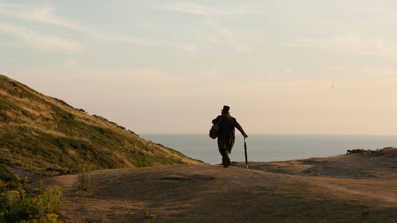 'Mr. Turner,' Mike Leigh (Competition)