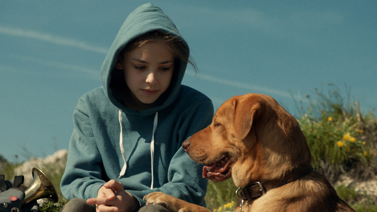 White God Cannes Film Still - H 2014