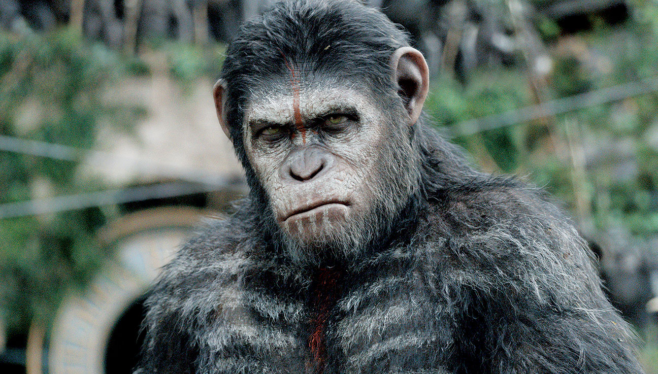 Dawn of the Planet of the Apes Reinvented - H 2014
