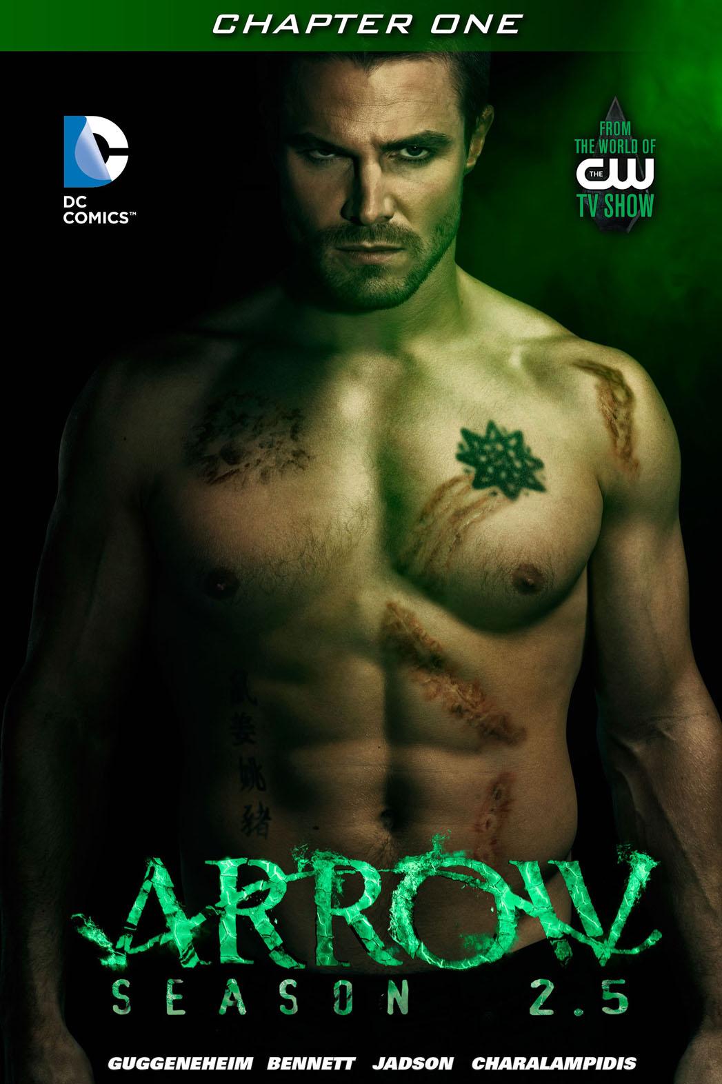 Arrow 2.5 Cover - P 2014