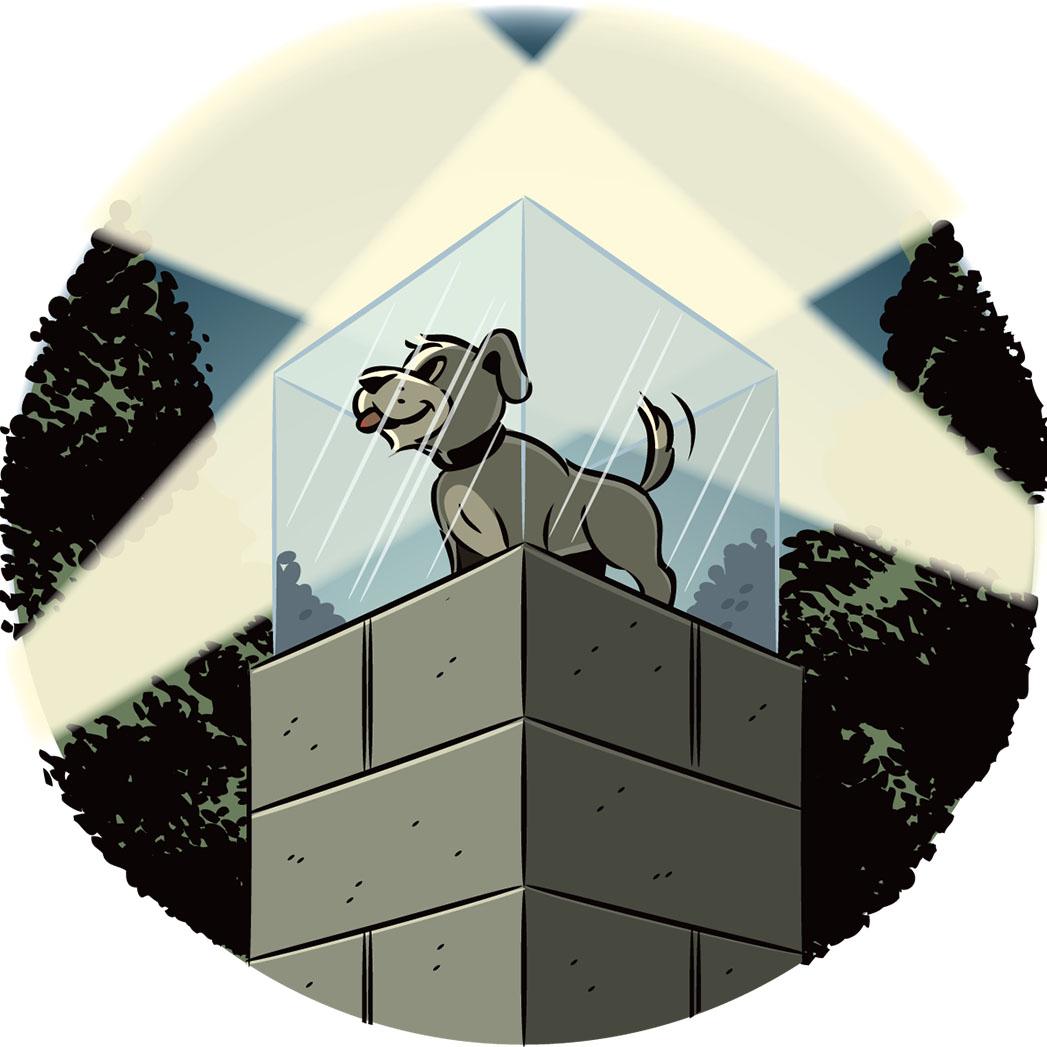 Dog Safety - P 2014