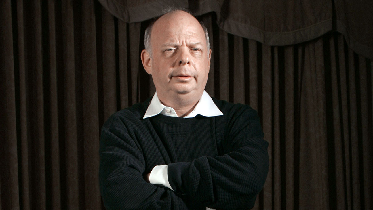 Wallace Shawn Older - H 2014