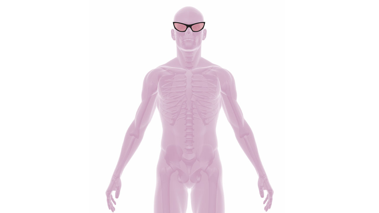 X-Ray with glasses - H 2014