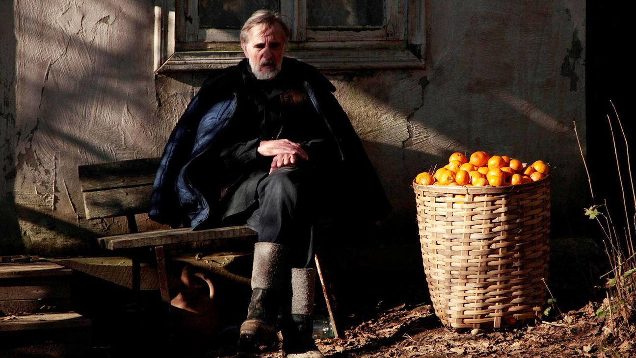 Mandariinid Tangerines Still - H 2014