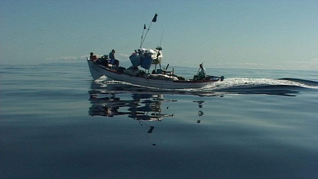 Rabo de Peixe