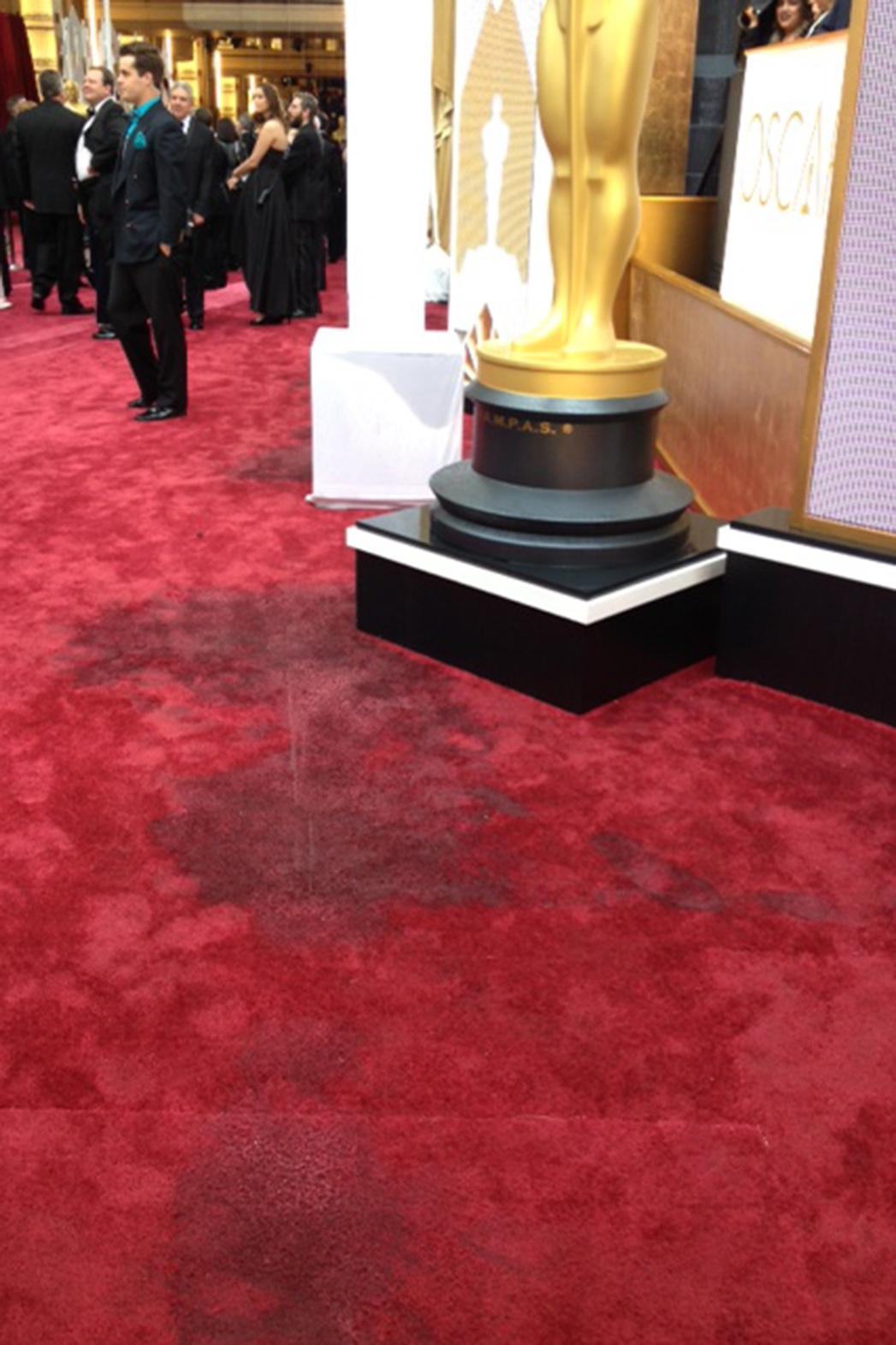 Oscars Red Carpet Rain - P 2015