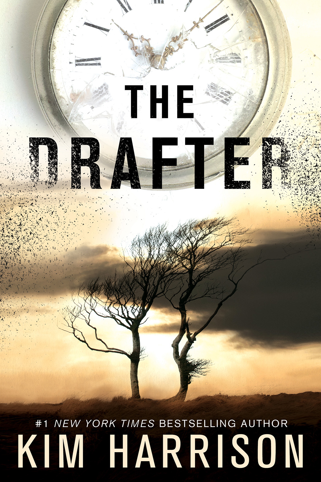 The Drafter Book Cover - P 2015