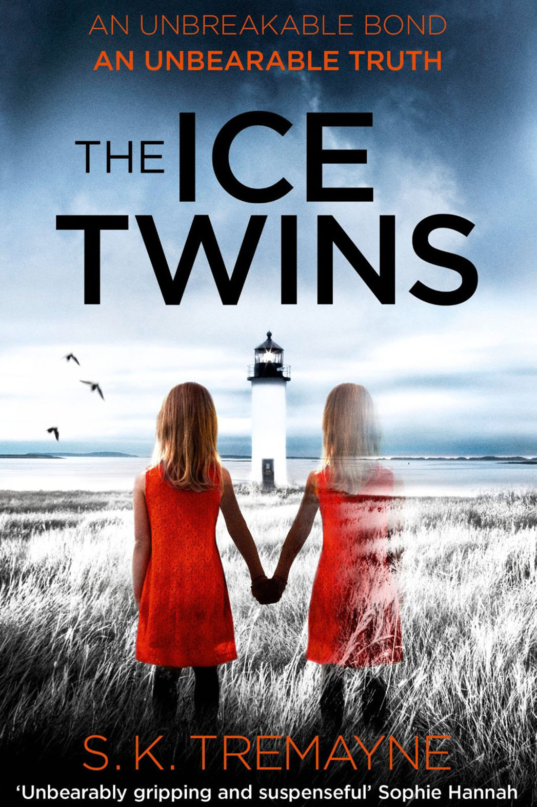 The Ice Twins Cover - P 2015