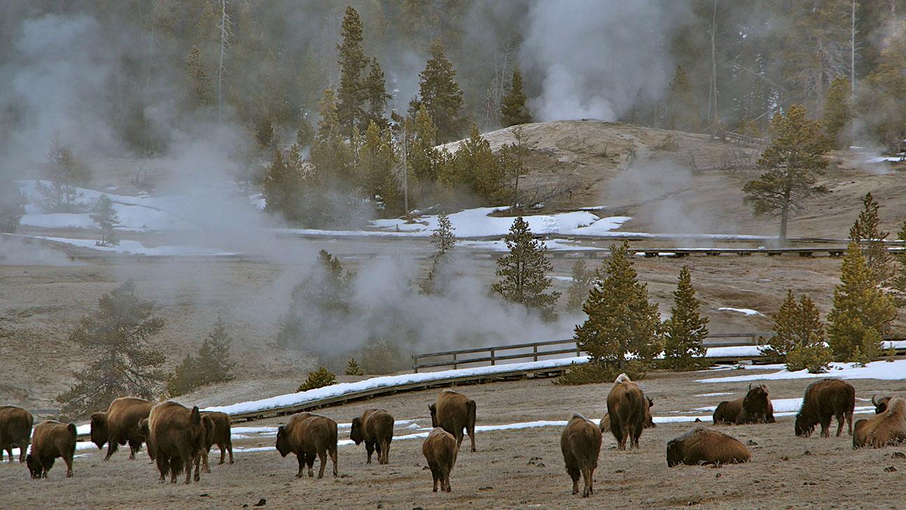 Wyoming - H 2015