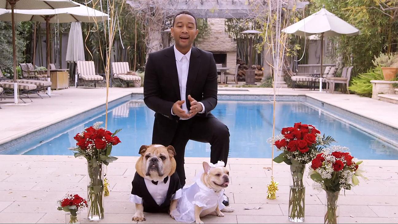 John Legend Dog Wedding - H 2015