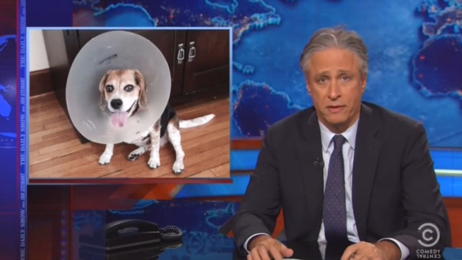 Daily Show Dog Still - H 2015