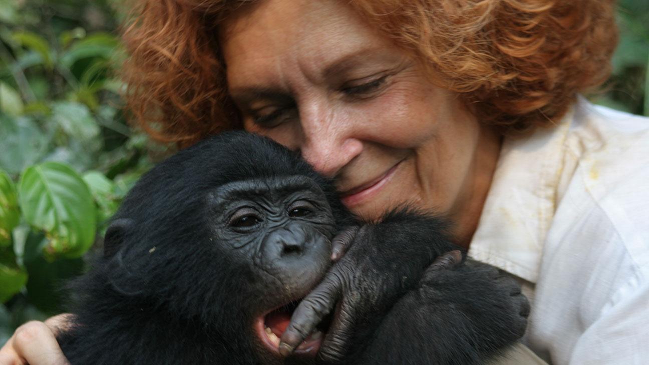 Bonobos Still - H 2015